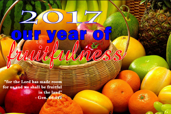 2017 - Year of Fruitfulness