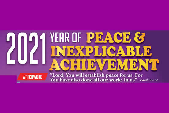 Our Year of Peace and Inexplicable Achievement
